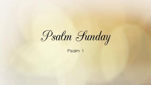 Psalm Sunday
