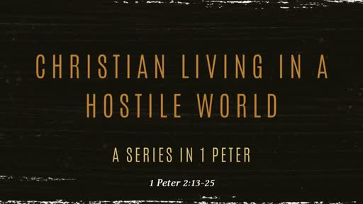 1 Peter 2:13-25