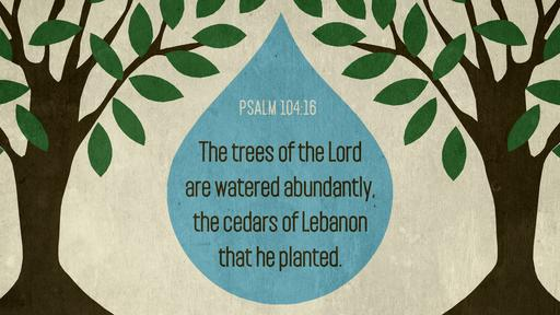 Psalm 104:16 verse of the day image