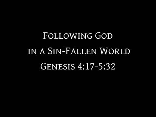 Following God in a Sin-Fallen World