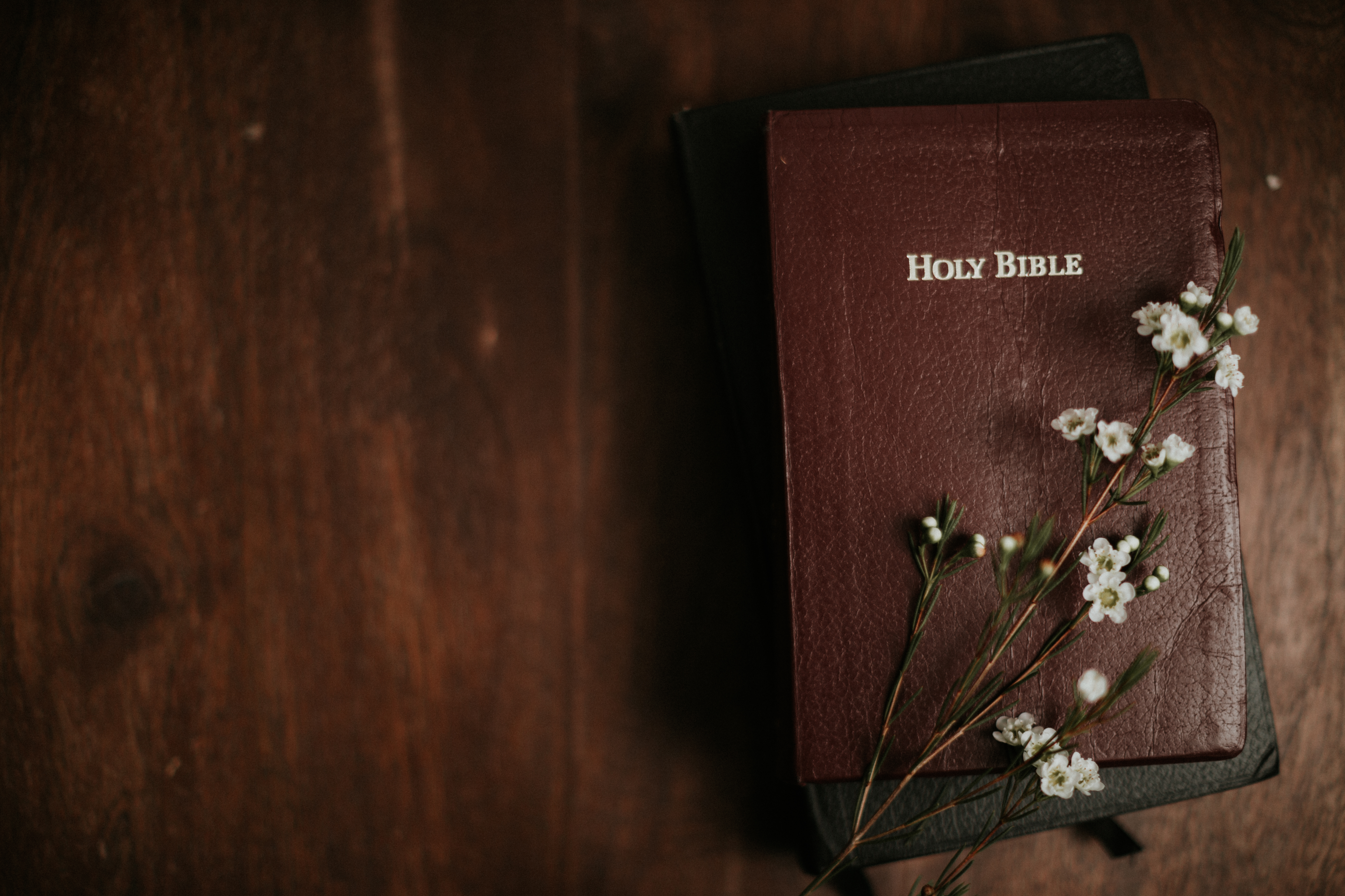 White wax flowers on closed Bibles