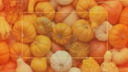 Pumpkin Patch Fundraiser 16x9 PowerPoint image