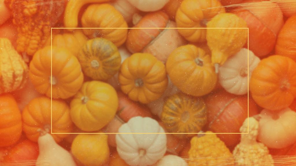 Pumpkin Patch Fundraiser large preview