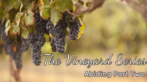 The Vineyard Series Abidingpart two