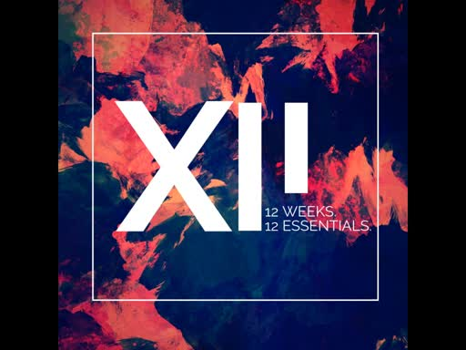 XII: the foundation
