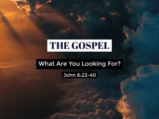 The Gospel - What Are You Looking For?