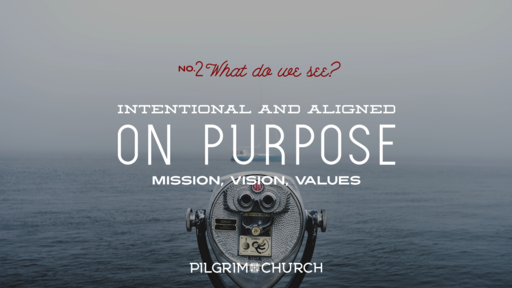 Sept. 16, 2018 - On Purpose No. 2 What Do We See?