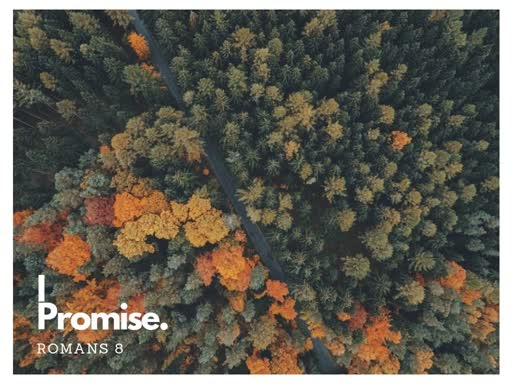 September 16, 2018 - I  Promise-Romans 8-Jon Enns