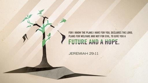 Jeremiah 29:11 verse of the day image