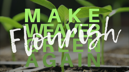 Flourish (Make Weaver Green Again)