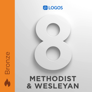 Logos 8 Methodist & Wesleyan Bronze