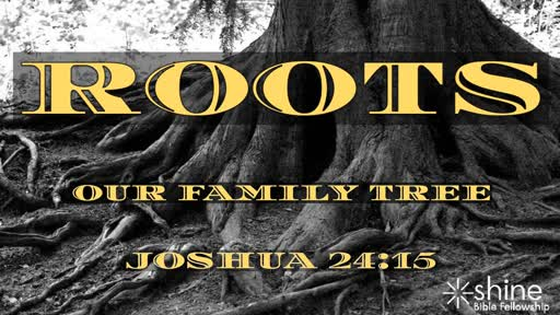 Roots - Our Family Tree Part 2