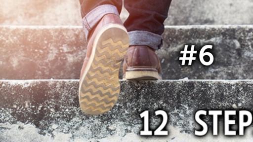 12 Step #6