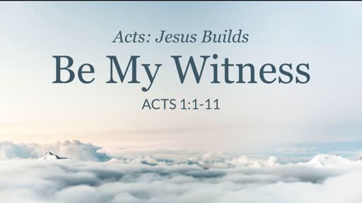 Be My Witness