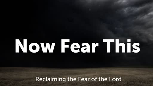 Now Fear This -