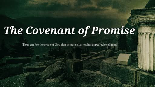 The Covenant of Promise