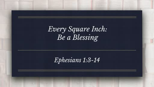 Every Square Inch:  Part of the Conformed Series