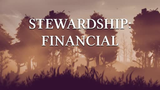 Stewardship - Financial