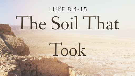The Soil That Took