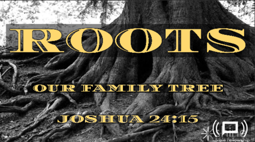 Roots - Our Family Tree Part 5