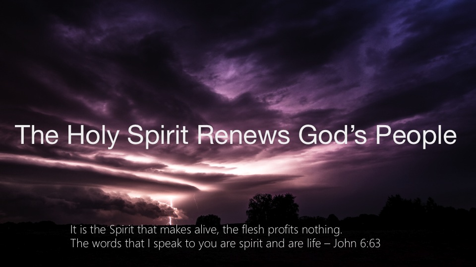 027-It Is The Spirit That Makes Alive The Flesh Profits Nothing. John-6-63