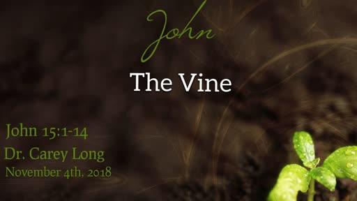 The Vine - John 15:1-14