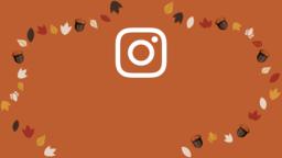 Thanksgiving Turkey  PowerPoint image 16