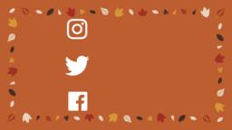 Thanksgiving Turkey  PowerPoint image 22