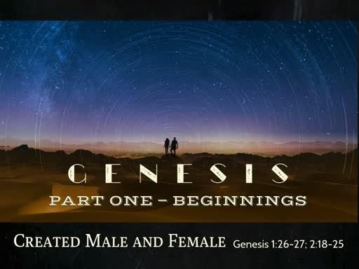 Created Male and Female