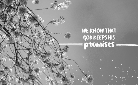 Connecting Promises To Fulfillment