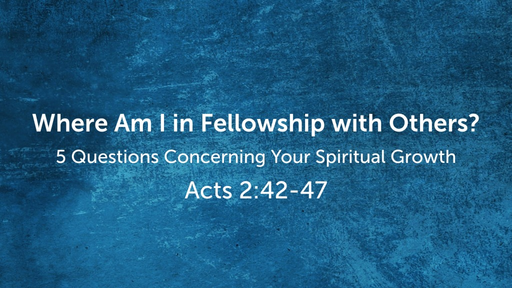 Where Am I in Fellowship with Others?