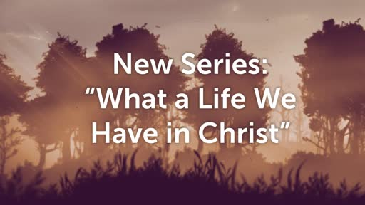 Walk In The Newness of Life