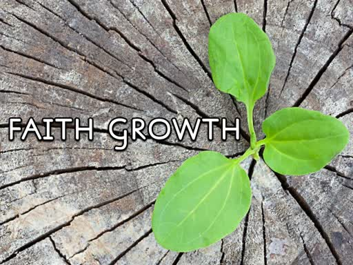 Faith Growth - Nov 11, 2018