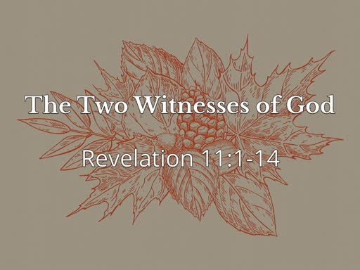 The Two Witnesses of God