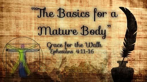 GBFsilt the Basics for a Mature Body