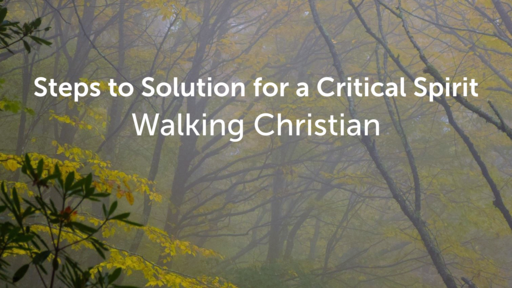 Steps to Solution for a Critical Spirit