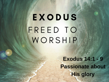 Freed To Worship: God is Passionate about His Glory
