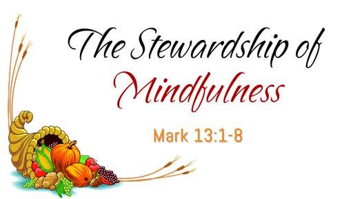 The Stewardship of Mindfulness