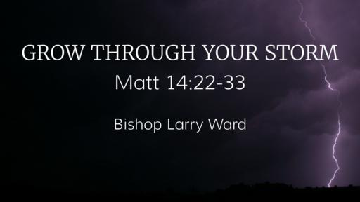 Grow Through Your Storm - Part II