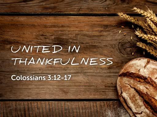 United in Thankfulness- Colossians 3:12-17