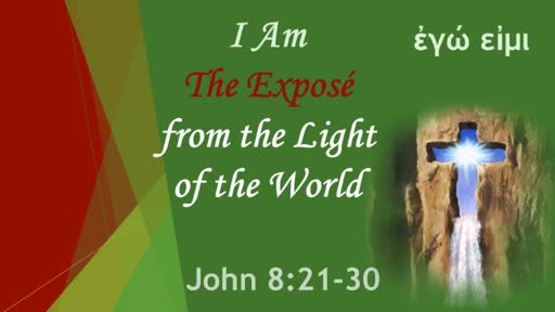 The Expose from LIGHT of the World