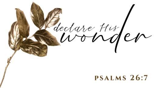 Declare His wonder part 2 2018 sun2