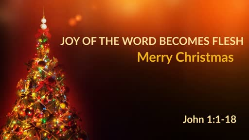 Joy of The Word Becomes Flesh
