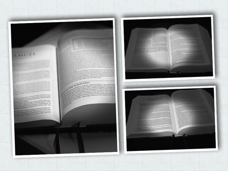 Activity Pastor Rogers Word In The World Bible Reading Plan