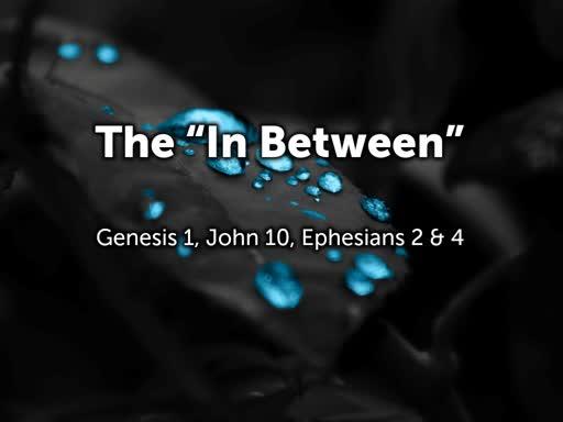 """The """"In Between"""""""