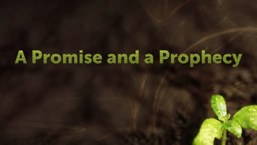 A Promise and a Prophecy