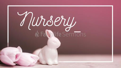 Nursery Rabbits