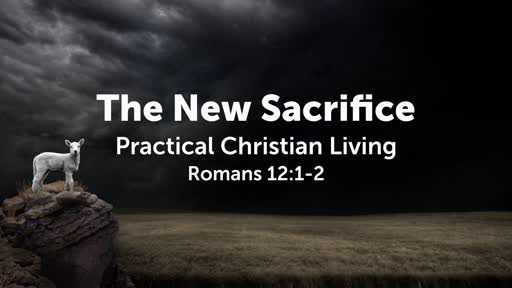 The New Sacrifice