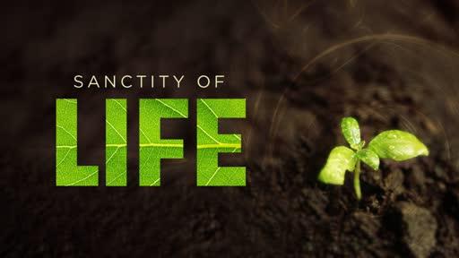 Sanctity of Human Life Sunday 1-20-19