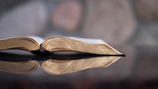 Adam Levine stumbles on biblical truth at wedding
